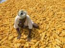 photo credit: Gates Foundation