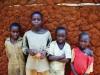 ルワンダで農業開発-聞こえは良いが誰が農業を営むのか?