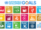 Do the SDGs Signal Revolution or Evolution?