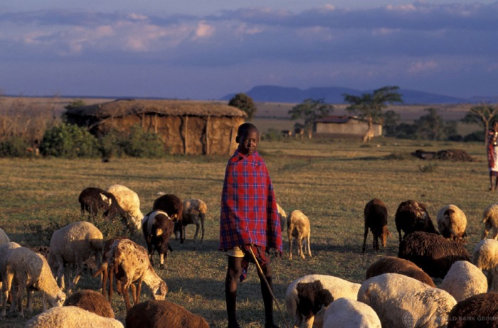 Photograph: World Bank