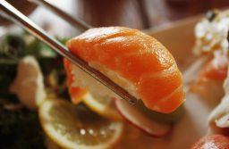 日本が援助したチリの鮭養殖産業で環境問題?経済・社会的な貢献も忘れてはいけない