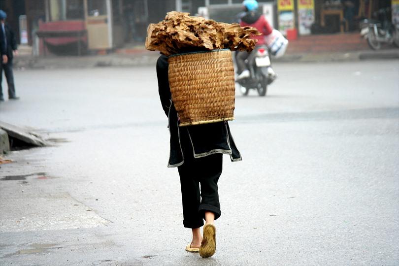 Worker, Vietnam