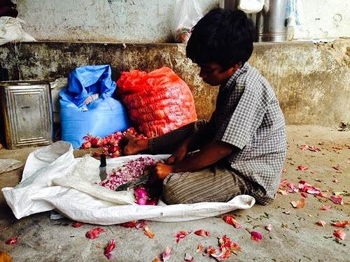 A boy cutting onions for his father's railway side restaurant in Paderu, Araku Valley, Andhra Pradesh. He had a small puppy to keep him company while he went about doing this mundane job.