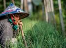 photo credit: Asian Development Bank