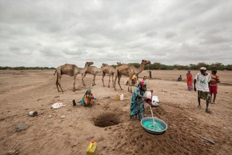 Photograph: UN News