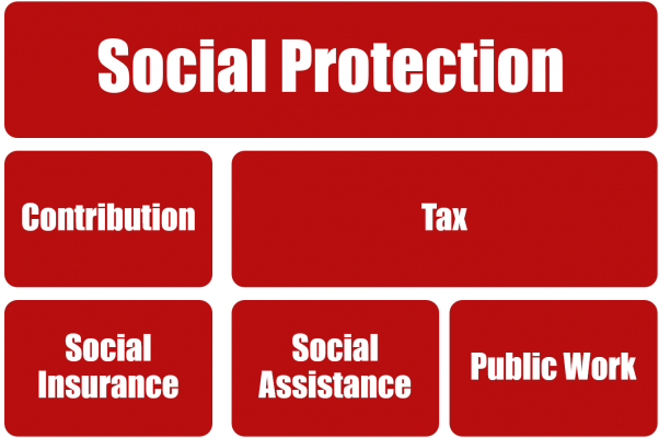 Social Protection Structure